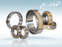 Super precision Double row cylindrical roller bearing