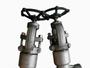 F304/SS304 Globe Valves, DN15, PN420, PSB